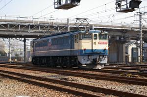 Imgp7008
