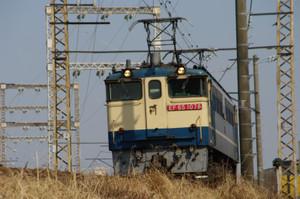 Imgp8371