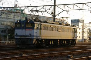 Imgp1696