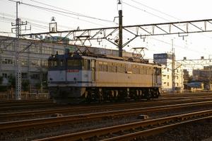 Imgp7039