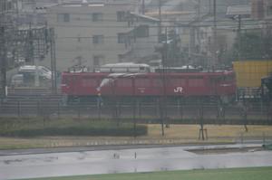 Imgp2646