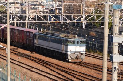 Dsc_4501_s