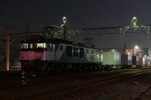 P1040074s