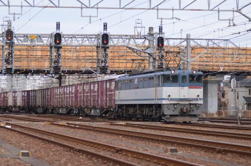 Dsc_0051s
